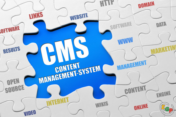 CMS in a simple word